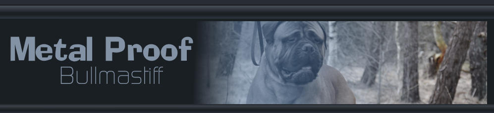 Metal Proof Bullmastiff